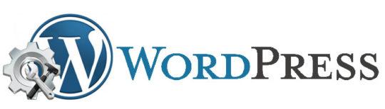 SEO плагины WordPress для внутренней оптимизации